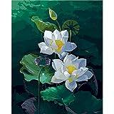 ZXDA Marco Animal DIY Pintura por números Lotus Pintura al óleo Pintado a Mano Dibujo sobre Lienzo Pintura acrílica decoración del hogar A1 50x65cm