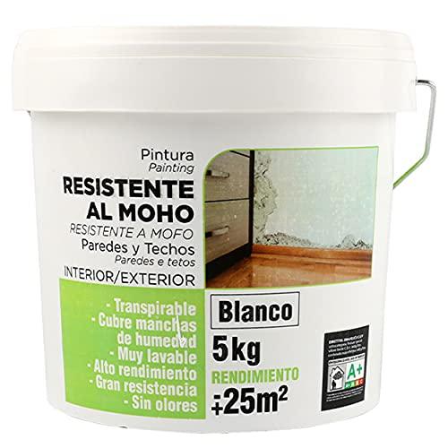 Pintura Plástica Antimoho Blanca Mate Resistente a la Aparición de Moho en Paredes - 5Kg