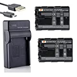 DSTE NP-FM500H Li-Ion Batería (2 Paquetes) Traje y Cargador Micro USB Compatible con Sony Alpha SLT-A57, A58, A65, A65V, A77, A77V, A99