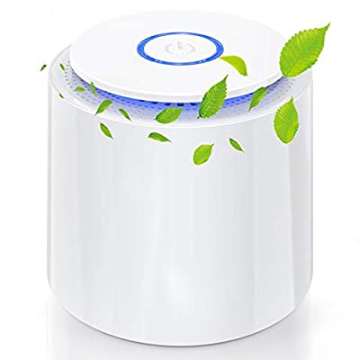 Air Purifier Update SY-701 Portable Air Purifiers 3-in-1 True HEPA & Active Carbon Filters Air Cleaner With Aromatherapy Function For Allergies, Smokers Home,Pollen, Pet Dander [Energy Class A ]