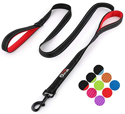 Primal Pet Gear Dog Leash 6ft Long - Traffic Padded Two Handle - Heavy...