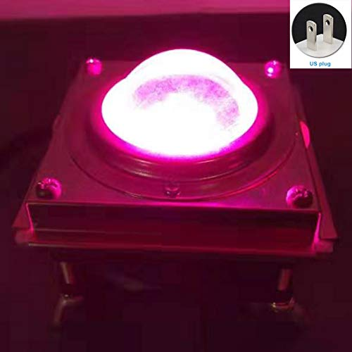 Yard Hydroponic Bonsai Cooling Fan Greenhouse Garden Professional 60W Full LED Grow Light Aquarium Plants Bloem: Roze Licht, EU Plug