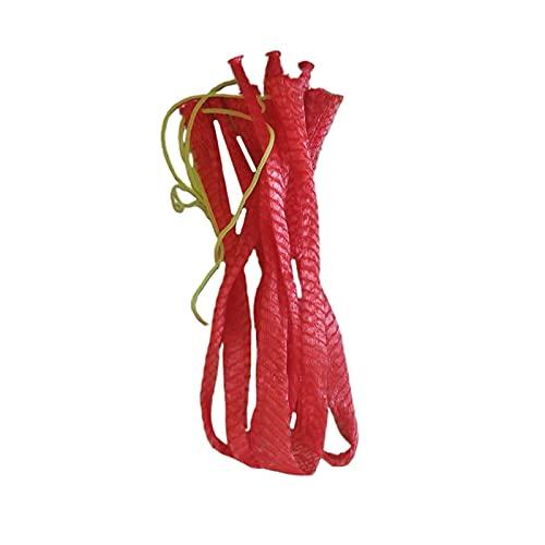 ZHJKK Bolsa de Almacenamiento de Malla de sandía de 100pcs Artículos de Viaje de Frutas de Verduras portátiles de la Fruta de la Fruta para Exteriores 35 cm (Rojo) (Color : Red, Size : 60cm)
