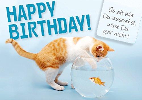3 stuks dubbele kaart met envelop, verjaardagskaart, kat vissen op goudvis Happy Birthday
