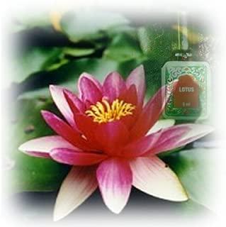 Lotus Pure Indian Attar Oil