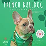 French Bulldog Calendar 2022: August 2021 - December 2022 Monthly Calendar Planner With Funny Pictures