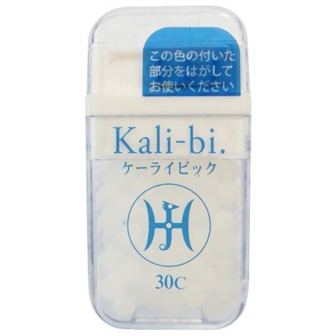 四分円シルク溶融ホメオパシージャパンレメディー Kali-bi.  ケーライビック 30C (大ビン)