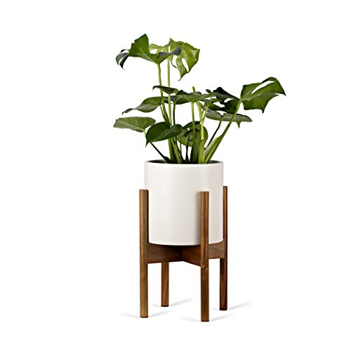 Pinecone Living Mid Century Plant Pot Stand and Modern Ceramic Flower Pot (White) | 10 Inch Flower Pot with Drainage Hole and Plug | Acacia Wood Flower Pot Holder | Planter for Indoor