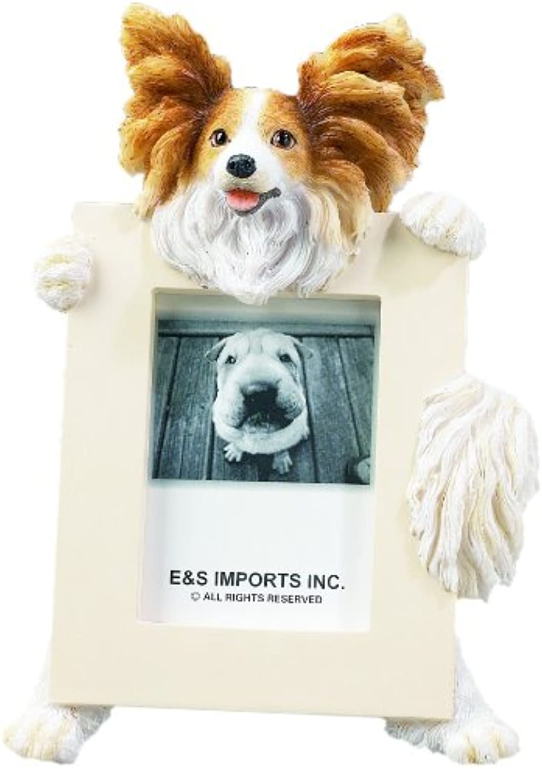 Papillion Picture Frame Holds Your Favorite 2.5 by 3.5 Inch Photo, Hand Painted Realistic Looking Papillion Stands 6 Inches Tall Holding Beautifully Crafted Frame, Unique and Special Papillion Gifts for Papillion Owners