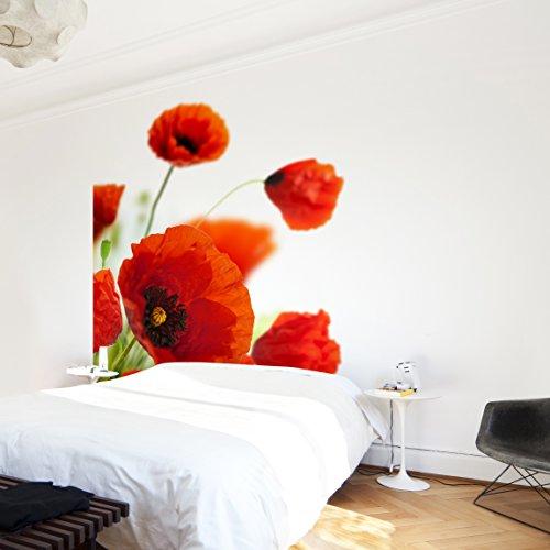 Apalis Vliestapete Blumentapete Radiant Poppies Fototapete Quadrat   Vlies Tapete Wandtapete Wandbild Foto 3D Fototapete für Schlafzimmer Wohnzimmer Küche   Größe: 192x192 cm, rot, 97931
