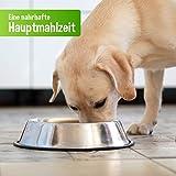 DOGREFORM Ente PUR 6 x 410 g Nassfutter auch für empfindliche bis sehr empfindliche Hunde getreidefrei glutenfrei geeignet zum BARFen - 3