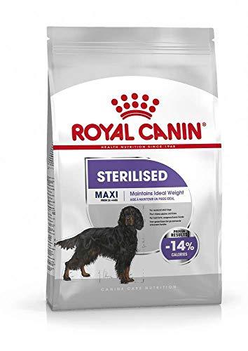 Royal Canine Adult Sterilised Maxi 9Kg 9000 g ✅