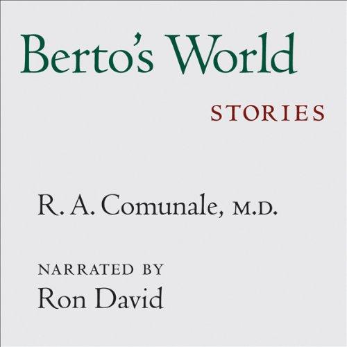 Berto's World audiobook cover art