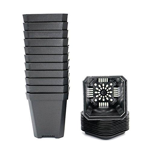 KINGLAKE 12 Piezas de macetas Negras cuadradas de 7 cm, Macetas plásticas cuadradas de Interior con paletas/bandejas, Gruesas
