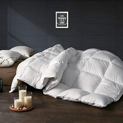 APSMILE All Season Goose Down Comforter - Ultra-Soft Egyptian Cotton, 750 Fill Power 47 Oz Quilted Fluffy Medium Warmth Duvet Insert (Full/Queen, Solid White)