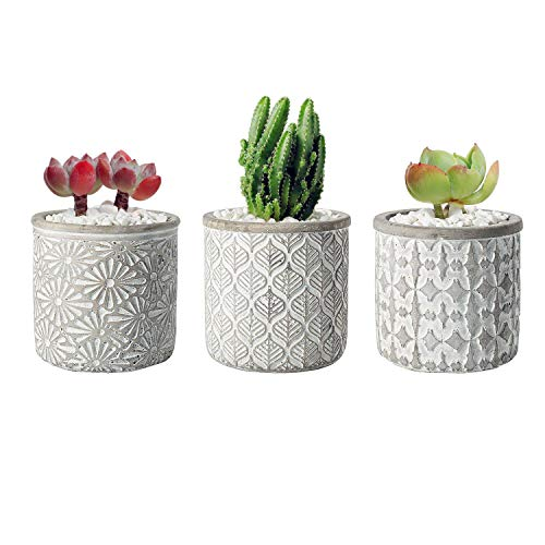 T4U 10cm Sukkulenten Töpfchen Zement Beton Rund mit Muster 3er-Set für Miniaturpflanzen Wohnung Deko