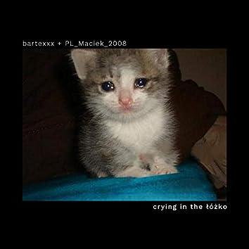 crying in the łóżko (ft. PL_Maciek_2008)