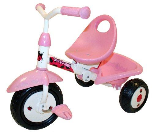 Kiddi-o by Kettler Fold 'n Ride Trike with...