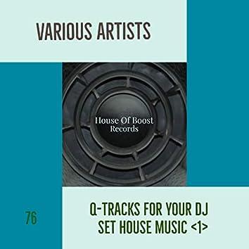 Q-TRACKS FOR YOUR DJ SET HOUSE MUSIC 1