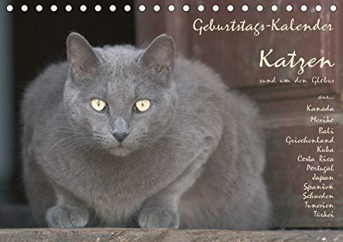 Geburtstags-Kalender Katzen. rund um den Globus (Tischkalender 2021 DIN A5 quer)