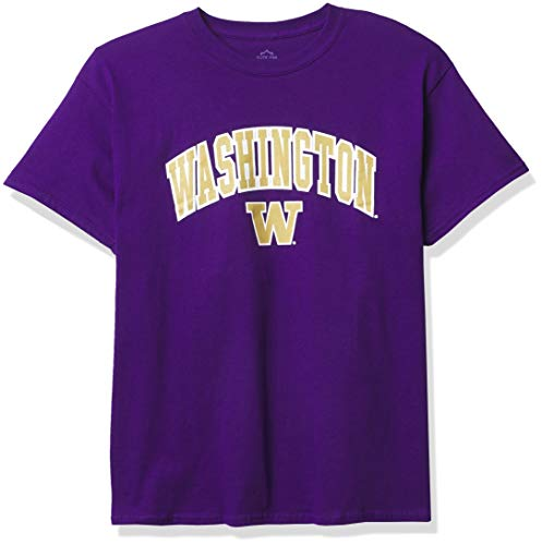 Elite Fan Shop NCAA Washington Huskies Mens T Shirt Team Color Arch, Washington Huskies Purple, Small