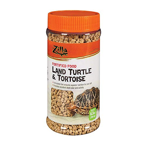 Turtle Food Land