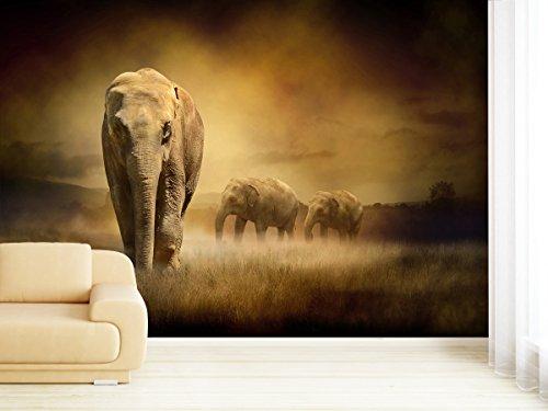 Fototapete Elephants at Sunset - weitere Größen und Materialien wählbar - DEUTSCHE PROFI QUALITÄT von Trendwände