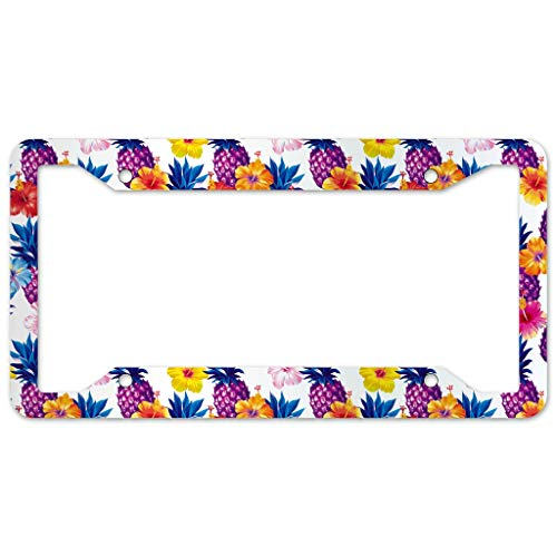 WOSITON Pineapple Fruit License Plate Frame 4 Pieces Design License Plate Frame With 4Holes Fite For Dorm. Cabi white 16x31cm