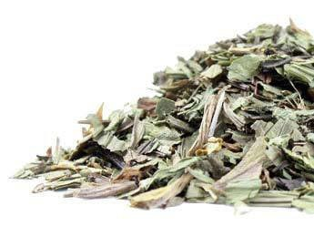 Raven Moonlight Bulk Herbs Plantain Leaf (Organic)