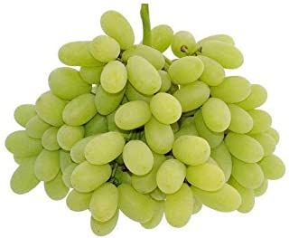 Fresh Grapes, Sonaka Seedless, 500 g