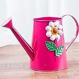 Pequeña regadera Hogar de riego del Color de la Lata Poder de riego, riego de impresión Can Vendimia, Flor de riego Pulverización Regadera (Rojo, 2L) Regadera para Plantas (Color : A)