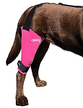 Walkabout Harnesses Pink Knee Brace for Dogs Treat ACL CCL Injury Arthritis Joint Pain Fatigue and Stress with The Walkabout Knee Brace  Medium Large Right