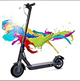 COLORWAY Electric Scooter Adult, 7.5Ah Long-Range Battery, 350W Motor Up to 25 km/h, 8.5 Inch Solid Rubber Tire, Foldable E-Scooter Portable &Lightweight Design (Black-CS2)