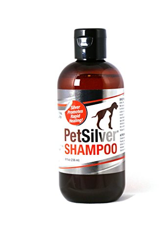 PetSilver Shampoo with Chelated Silver for Dogs and Cats, Made in USA. Vanilla and Citrus Scent. 8oz