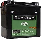 Magneti Marelli YTX14-BS Batteria Moto Scooter 12Ah 12V 200A Tecnologia AGM Quantum