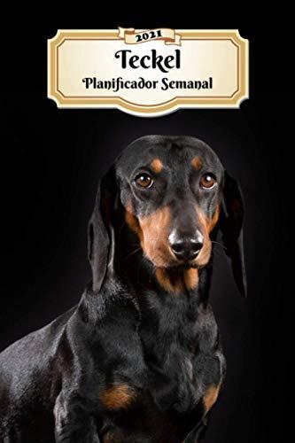 2021 Teckel Planificador Semanal: 107 Páginas | Tamaño A5 | Calendario | 12 Meses | 1 Semana en 2 Páginas | Agenda Semana Vista | Tapa Blanda | Perro