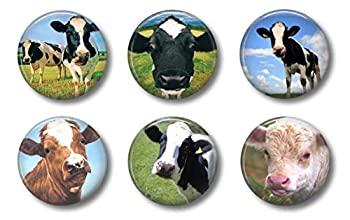Cute Locker Magnets For Teens - Funny Cows - Fun School Supplies - Whiteboard Office or Fridge - Gift Set  Cows