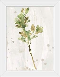 CANVAS ON DEMAND Antique Earthtone Herbs I White Framed Art Print, 15