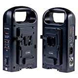 SOONWELL 2-Channel Charger Sony V Lock Power Supply V Mount Li-ion Battery Charger for Camcorder