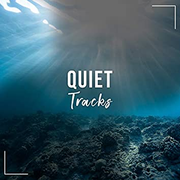 Quiet Healing Tracks