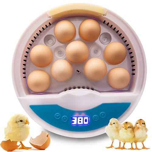 Incubadora Automática de Huevos con volteo y eclosión automáticos,9 Piezas De Huevos Máquina para Incubar Aves De Corral Totalmente,para gallinas, Patos, Gansos