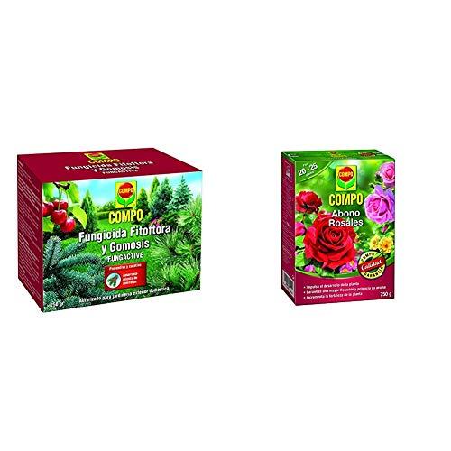 Compo Fungicida Fitóftora y Gomosis, Preventivo y curativo, Apto para jardinería exterior doméstica + Abono para rosales Apto también para otras plantas de flor, Envase estanco, Granulado