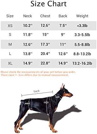 Adidog sweater _image2