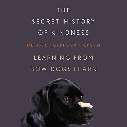 The Secret History of Kindness audiobook cover art