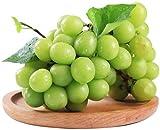 20 piezas de semillas de uva verde vides árboles frutales de sombra para jardín semillas de bayas jugosas patio de granja al aire libre cultivo de otoño fácil de plantar