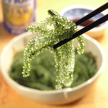 品質と鮮度にこだわった 生海ぶどう200g【専用タレ付き】
