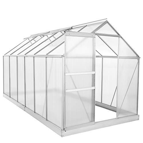 Zelsius Aluminium Gewächshaus für den Garten | inklusive Fundament | 380 x 190 cm | 6 mm Platten | Vielseitig nutzbar als Treibhaus, Tomatenhaus, Frühbeet und Pflanzenhaus