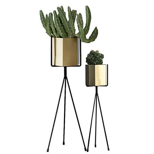 FZN Support de Plancher en Fer forgé, Salon Nordique Salon de Fleurs Minimaliste Moderne avec Support de Fleurs Pots de Fleurs (Taille : 25 * 65cm+30 * 75cm)