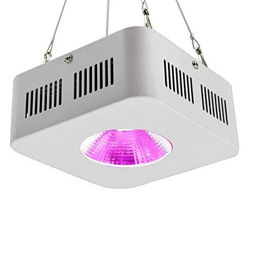 XAJGW Derlights LED Grow Light, lampada da 200W a spettro completo a doppio chip ad alta potenza per coltivare tende e serra, 85-265V, per coltura idroponica in erba in erba e semina