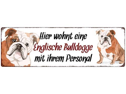 Interluxe Metallschild - Hier wohnt eine Englische Bulldogge - dekoratives Schild, Blechschild als Geschenk für Menschen mit Hund